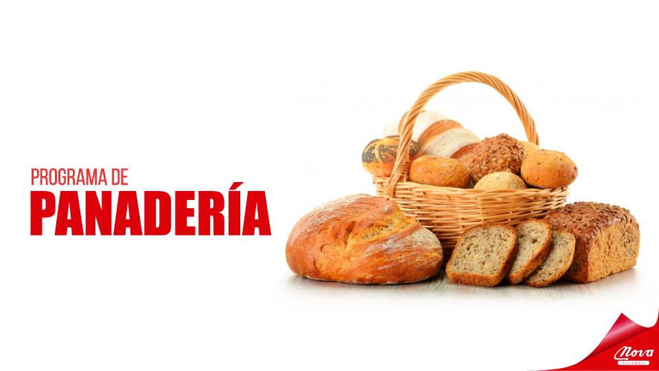 Programa de Panaderia