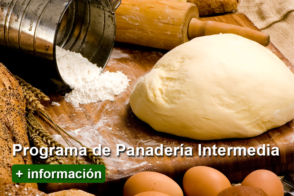 index-programa-panaderia-intermedia-escuela-nova